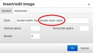Image dialog Advanced tab with a border style entered