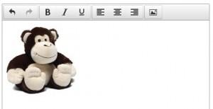Borderless image in the TinyMCE editor